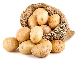 Solanina zawarta w ziemniakach to trucizna?